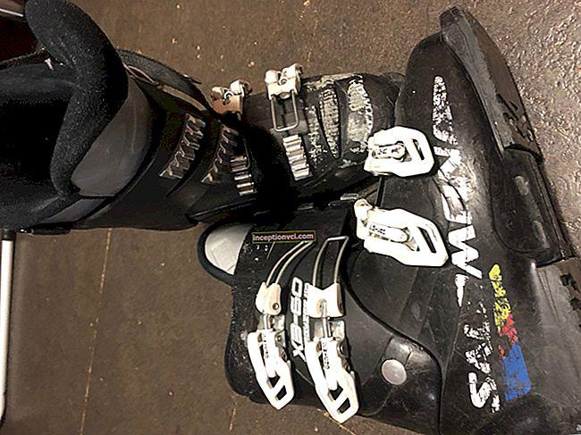 Botas de esqui alpino