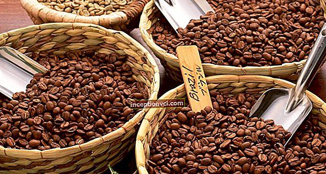 Como escolher bons grãos de café