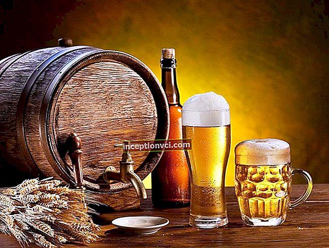 Làm thế nào để chọn một nhà máy bia tại nhà