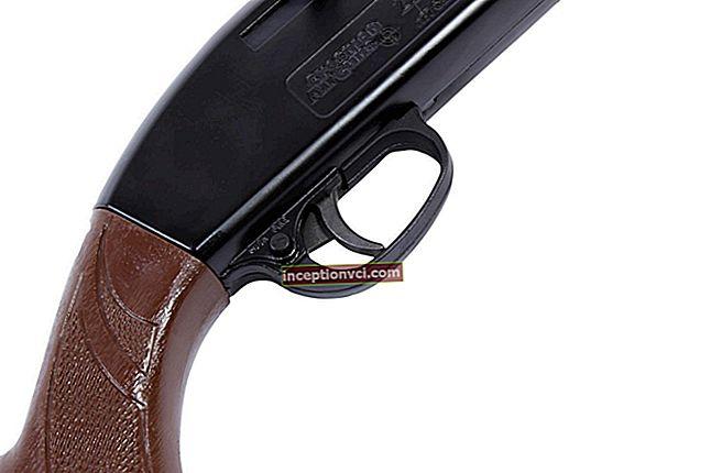 """Visão geral do rifle de ar """"Crosman 2100 B""""."""