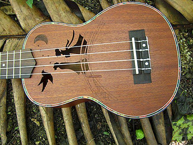 Cách chọn đàn ukulele: mẹo cho người mới bắt đầu